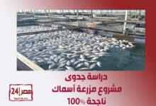 دراسة جدوى مشروع مزرعة أسماك ناجحة 100%